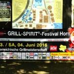2016-06-Grill-STM-Horn-AP-0001