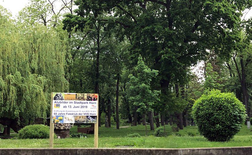 Ausstellung Stadtpark 13. Juni